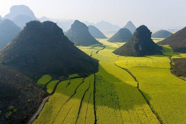 Limestone hills in China amid fields in bloom create an otherworldly image. For more images, go to  latimes.com/natgeo.