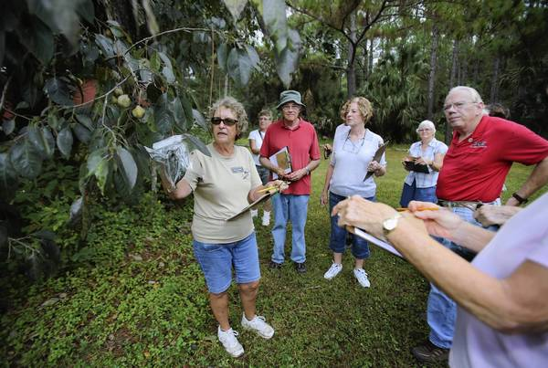 Tina Raether leads a training class on Monday, October 7, for future docents at Trout Lake Nature Center in Eustis . ( Tom Benitez/Orlando Sentinel )
