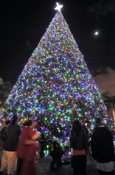 This 2011 photo shows Delray Beach's 100-foot-tall Christmas tree in Old School Square.