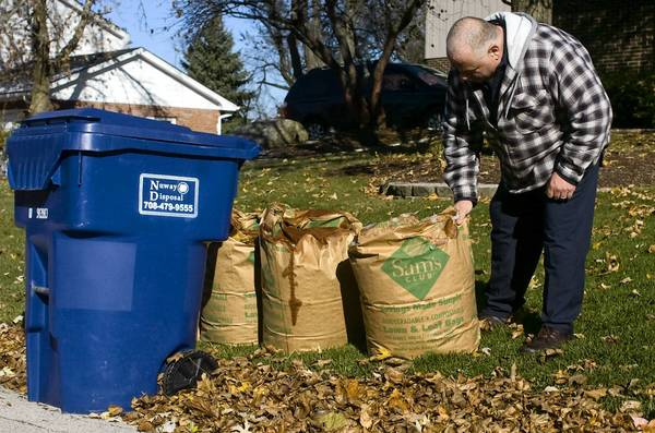 Bob Wiewiura, who lives in the Old Oaks neighborhood in Homer Glen,, drags what he says he hopes are the season's last leaves to the curb. Many of Homer Glen's leaf-burning residents live in that area east of Parker Road. Others are clustered in other subdivisions in the northwest part of town.