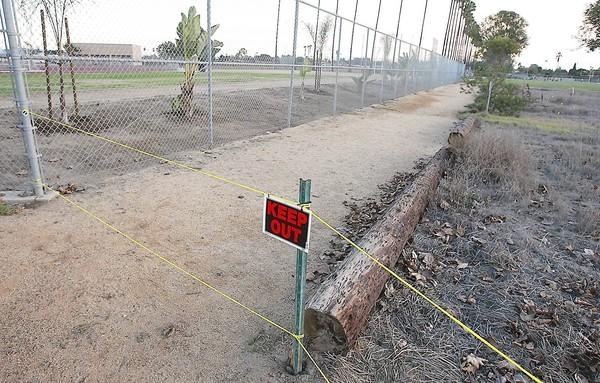 The U.S. Fish and Wildlife Service recently directed Costa Mesa to remove two unpermitted trails in Fairview Park that have damaged sensitive habitat and affected the San Diego fairy shrimp, an endangered species. One of the trails, pictured here, runs along the fence between the park and Estancia High School's Jim Scott Stadium. The entire area is also roped off to prevent further damage or intrusion upon the sensitive habitat and fairy shrimp.