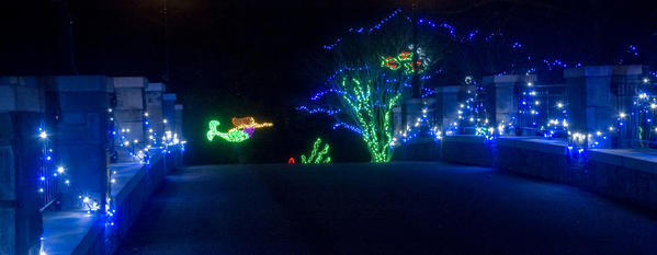 Take a tram tour of the Norfolk Botanical Garden then stay for a view of the holiday lights display.
