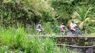 Photos: Jamaica