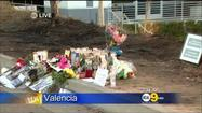 Video: Stars React To Paul Walker's Death, Other Crash Victim Identified