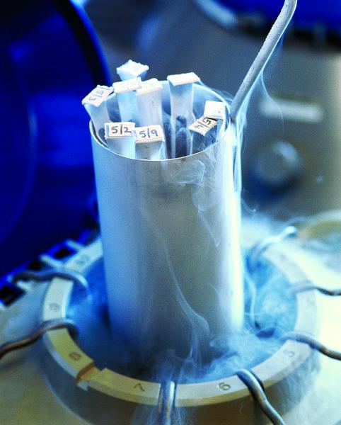 Frozen human embryos being removed from liquid nitrogen storage