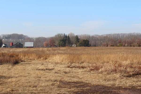 The town council is looking to purchase the former Old Maids Farm along Tryon Street.