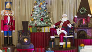Chef completes entirely chocolate holiday scene at Disney's Swan and Dolphin