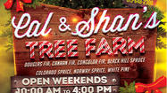 Hallmark Channel comes out to Cal & Shan's Christmas Tree Farm Saturday: chance to win a trip to the 'North Pole'
