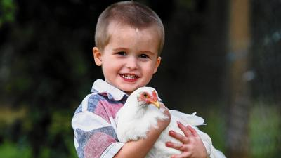DeBary says family can't keep chickens that autistic boy has bonded with