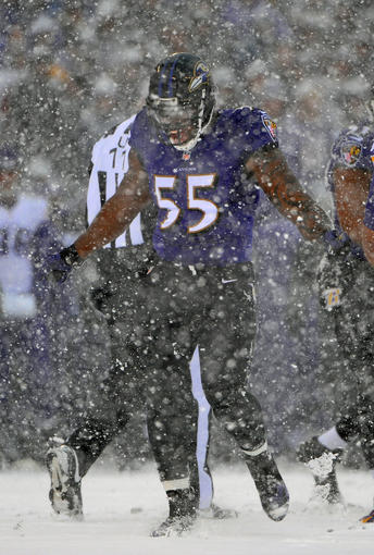 Ravens linebacker Terrell Suggs celebrates after tackling Vikings running back Adrian Peterson.