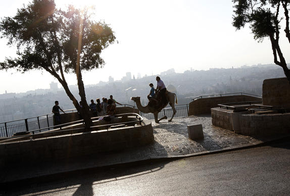 Tourists ride a camel at an observation point overlooking Jerusalem's Old City on the Mount of Olives August 13, 2013.
