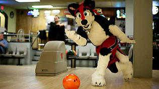 Video: Furry Friends bowling night