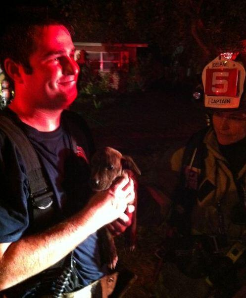 A fire Wednesday night, Dec. 11, 2013 in a home along the 500 block of Coral Way caused extensive damage and displaced the people living there, officials said. Delray Beach Fire-Rescue personnel administered oxygen to a small dog and returned it to its owner