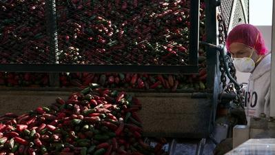 Sriracha shipments delayed until January by health regulators' action