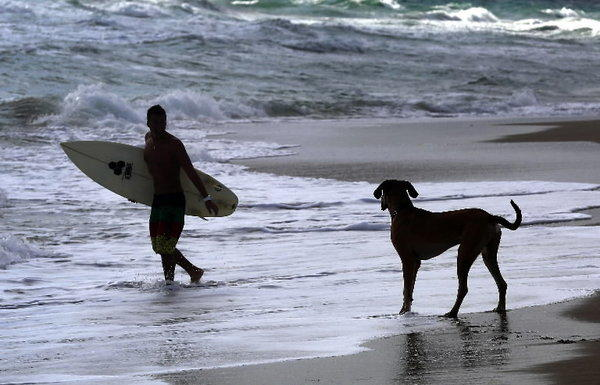 Boca Raton opened the only stretch of officially sanctioned dog beach between Jupiter and Fort Lauderdale Friday.
