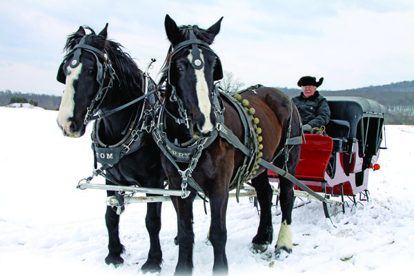 Holiday Wishes 2013: Sleigh Ride
