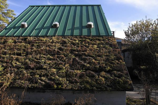 The Virginia Living Museum has living green roofs in four different locations.