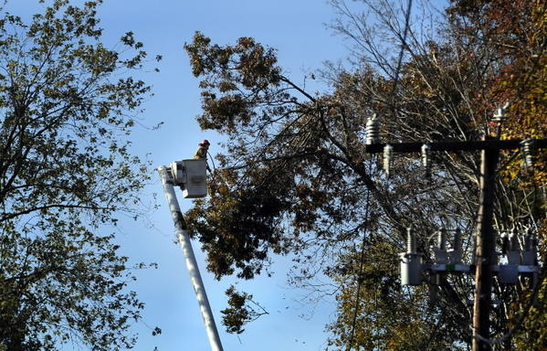 Tree trimming crews will be fanning out over Glastonbury in January and February.