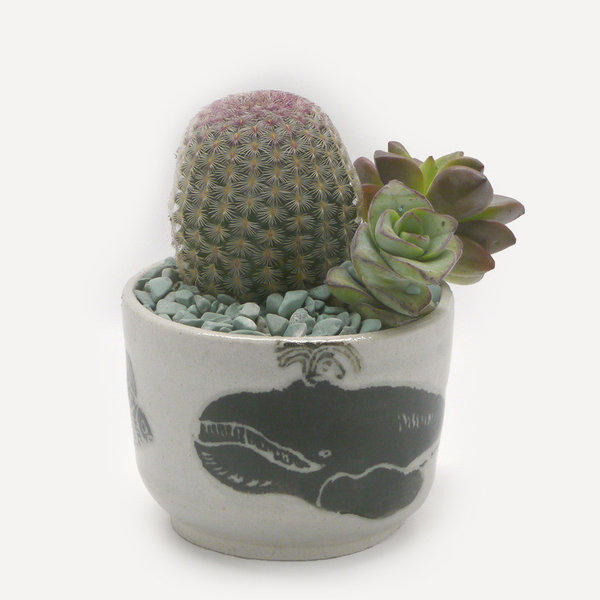 The artist's whale cup, $45, is shown here used as a planter for miniature succulents and cactus (not included). The artist etches and paints her artwork onto each vessel, then fires the clay, then applies a transparent glaze and fires the work again.