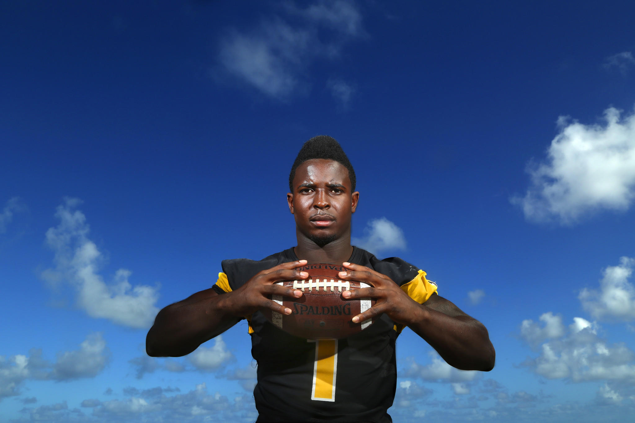 Broward County Class 5A-4A-3A-2A Player of Year: Sony Michel.