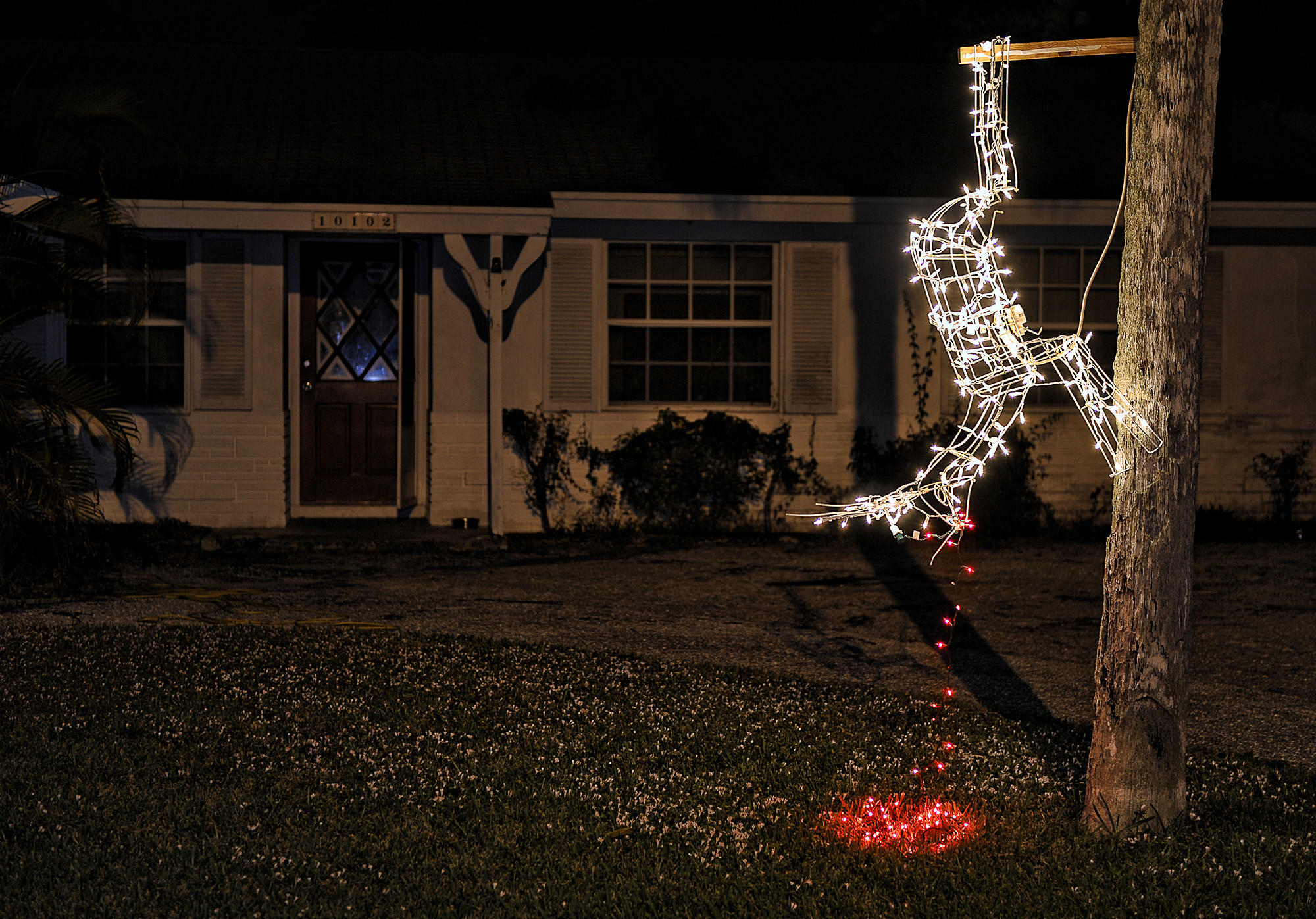 "A Palm Beach Gardens home has an interesting way of depicting Christmas. A ""dead"" reindeer hangs upside down from a tree spewing out red lights of ""blood""."