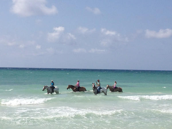 A leisurely ride through the surf.