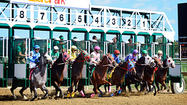 Slots revenue drives 13 percent increase in Md. horse breeding in 2013