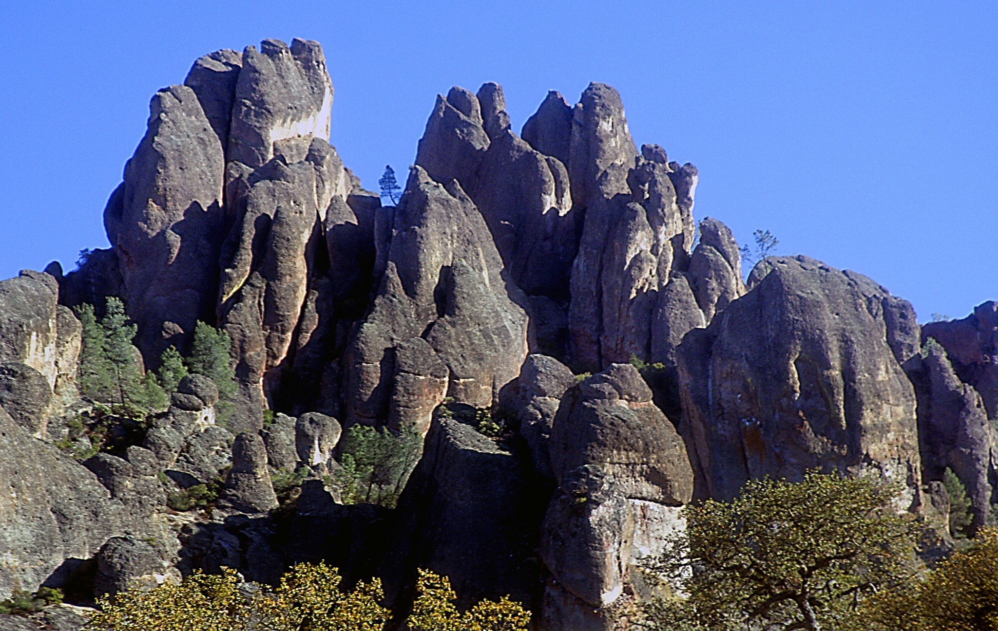 Pinnacles National Park - LA Times