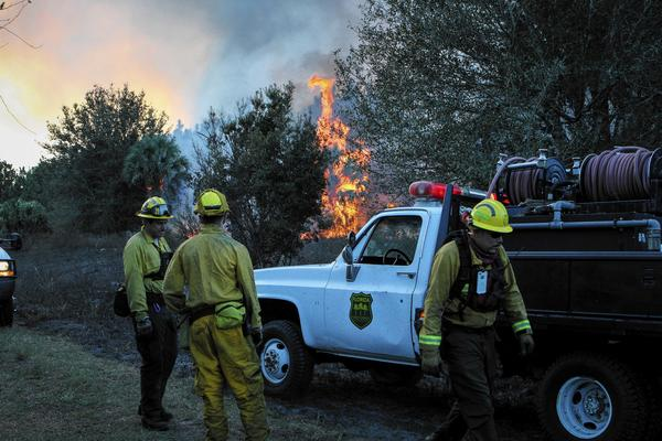 Crews work a controlled burn in Geneva, Fla. on Wednesday December 18, 2013.