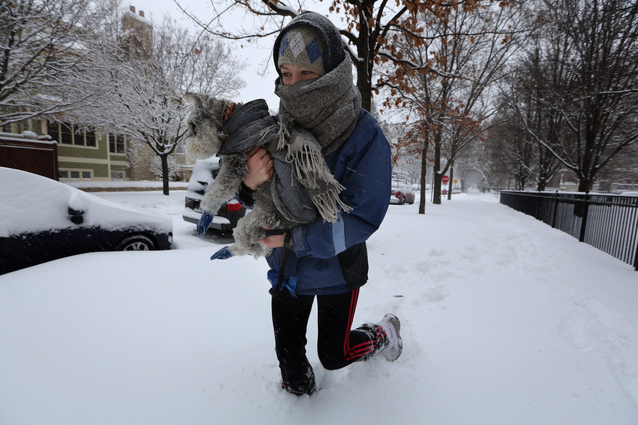 Chicago weather: Dangerous temps, wind chills hit area ...