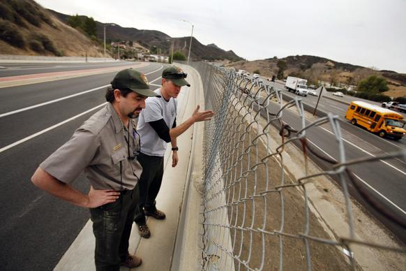 The National Park Service's Seth Riley, left, and Jeff Sikich stand at a wall overlooking the 101 Freeway at Liberty Canyon Road in Agoura Hills, where a mountain lion attempting to cross was fatally struck by a car last October. The area is part of a critical wildlife corridor that connects the Santa Susana Mountains and Simi Hills to the Santa Monica Mountains.