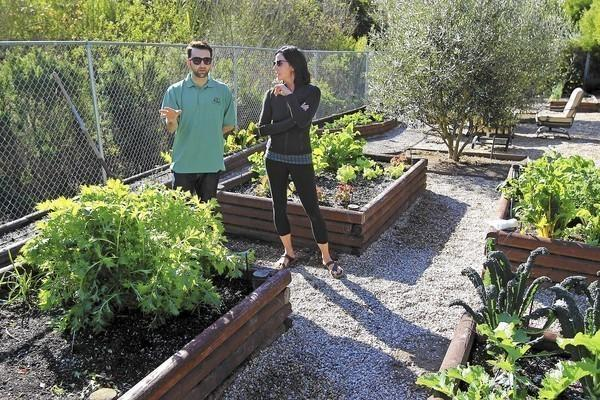 Mike Saraylian, Harvest to Home owner, left, talks to Ruth Jolley about her backyard home garden in Corona del Mar on Tuesday.