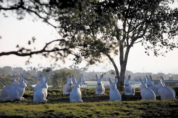 Rabbit statues at Newport Beach Civic Center and Park. According to the City's website the cost was about $13,800 per rabbit sculpture. The intention to create them was not to be for art purpose, but instead to appeal to children. (Kevin Chang/ Daily Pilot)