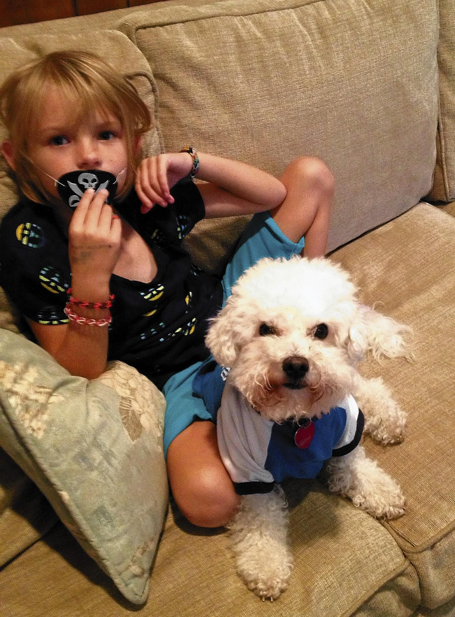 Eddy, a 2 year old Bichon / poodle mix of Allentown, pictured with Avery Leber, 7, one of Kathy Leber's grandchildren.