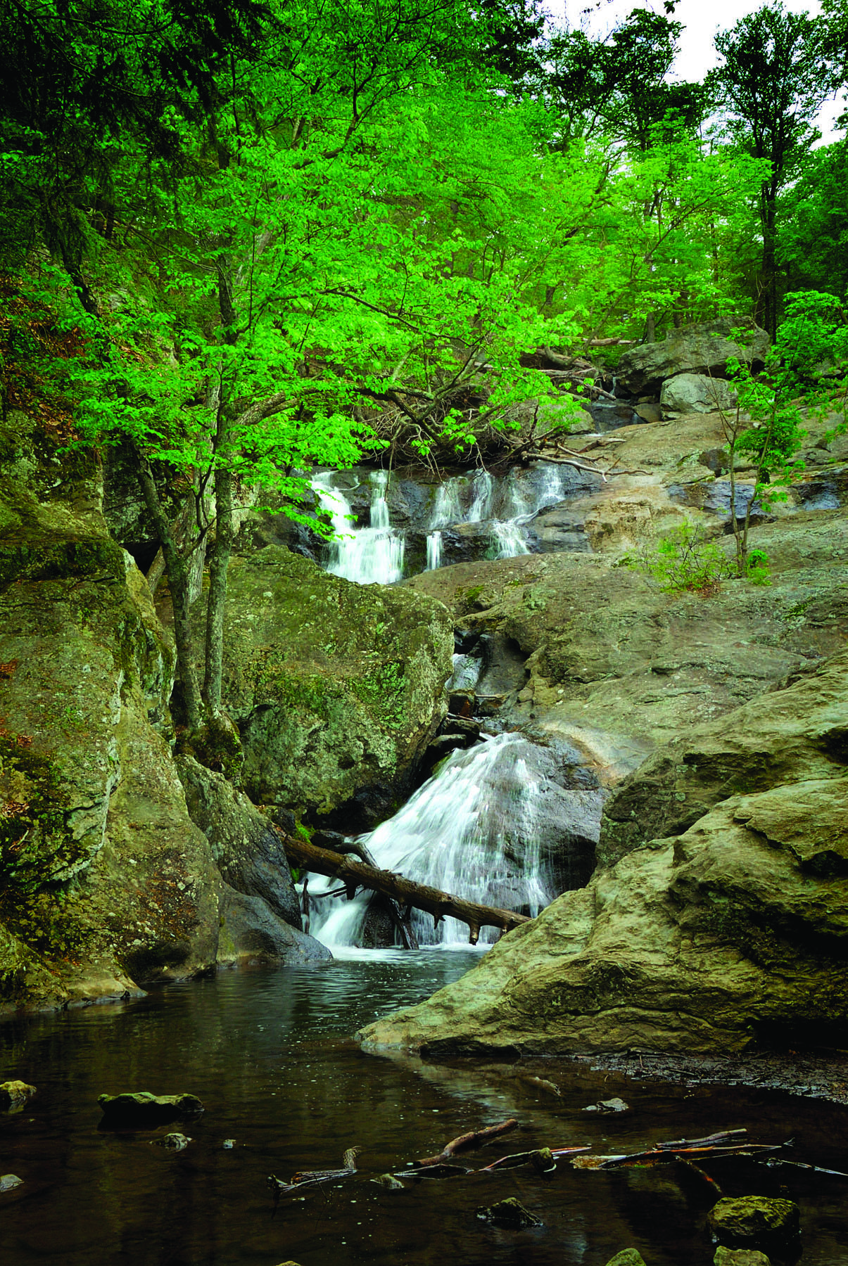 Cunningham Falls State Park, located in the Catoctin Mountains, is known for its history and scenic beauty, as well as its 78-foot cascading waterfall.