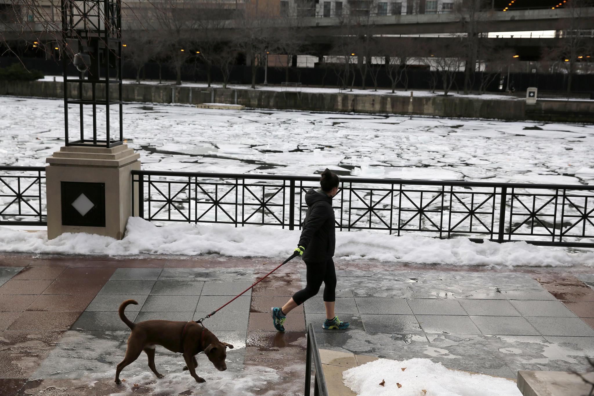 A woman walks a dog along the Chicago River near 429 E. North Water Street in Chicago on Jan. 13, 2014.