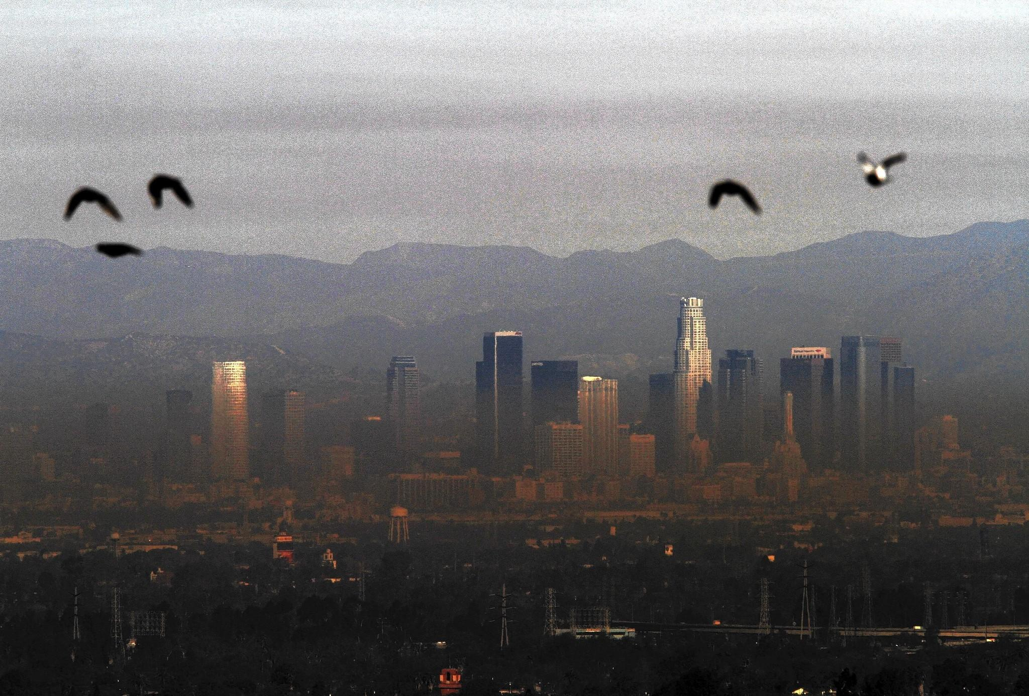 Exceptional dryness brings the hazy days of winter latimes a band of sooty brown haze cloaks downtown los angeles in this view from hilltop park sciox Gallery