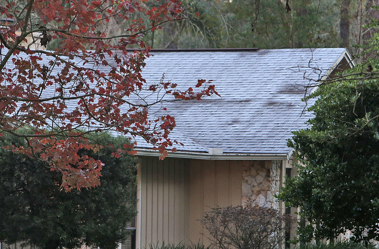Heavy frost on a roof at a home in Longwood after a temperature was recorded at 30 degrees at 6:30am. (Red Huber/Staff Photographer)
