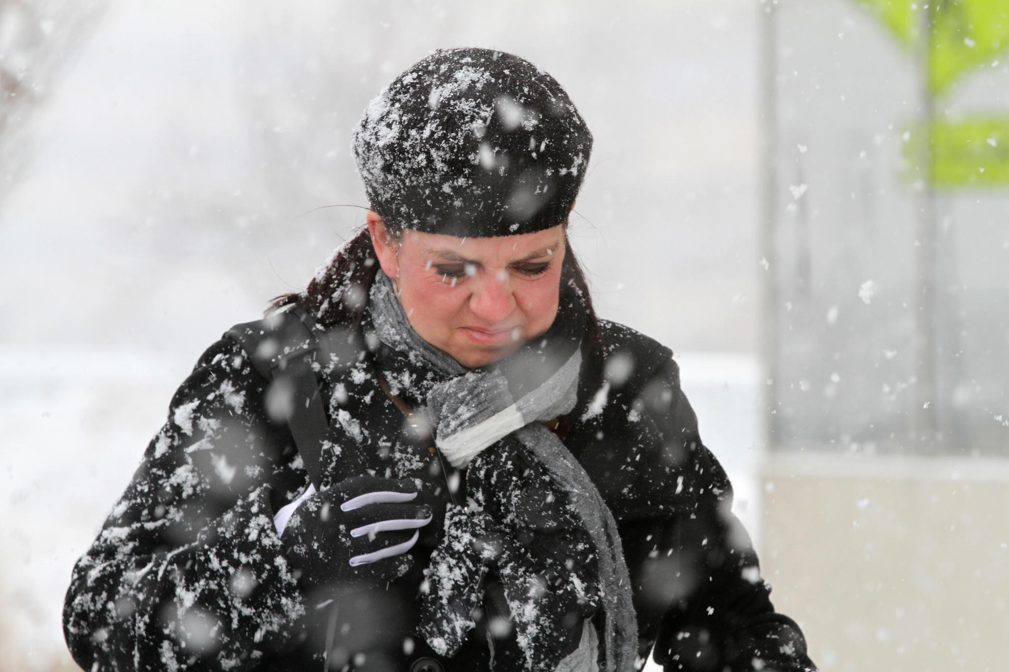Stacy Espinosa puts her head down in the swirl of fat snow flakes falling again after several snowless days in Naperville.