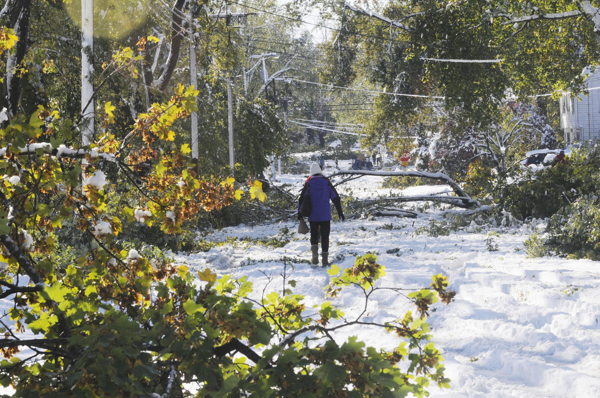 Damage like that pictures, on Four Mile Road in West Hartford, caused by the October 2011 ice storm, could become more frequent as the climate changes.