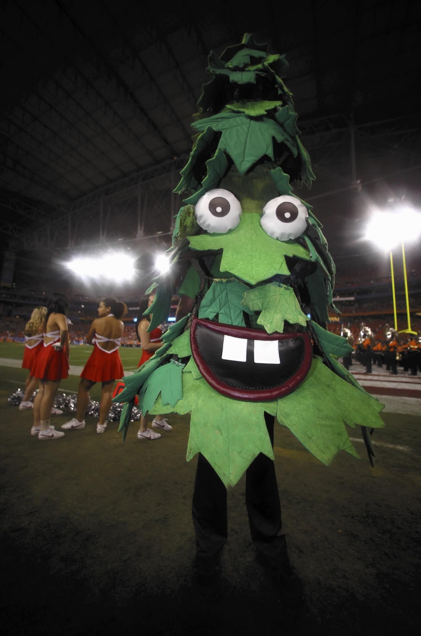 The Stanford University mascot, Tree, got into some trouble at a basketball game in 2006.