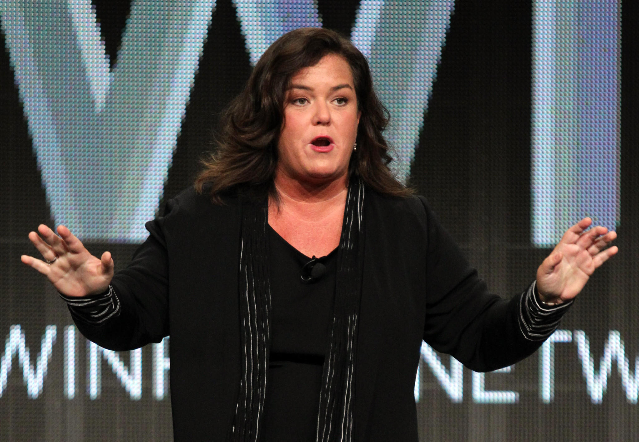 Rosie O'Donnell speaks during the 'The Rosie Show' panel during the OWN portion of the 2011 Summer TCA Tour held.