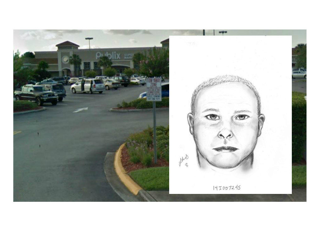 Deputies released this image of a man who touched himself while driving a van in a Publix parking lot in Kissimmee.