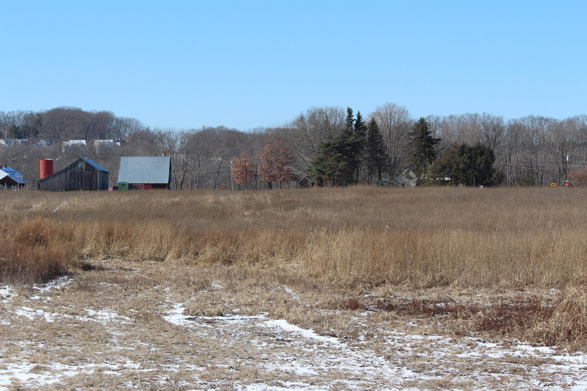 The town council unanimously approved the purchase of this 16.3-acre organic farm in South Glastonbury.
