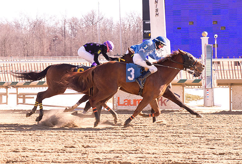 Trevor McCarthy rides Chi Chi's Pride to victory at Laurel Park.