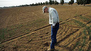 Drought leaves dark cloud over California ranchers, growers