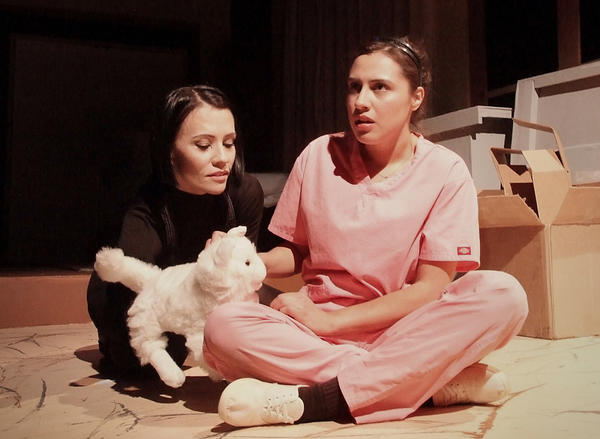 'A Cat Named Mercy' at Casa 0101 Theater