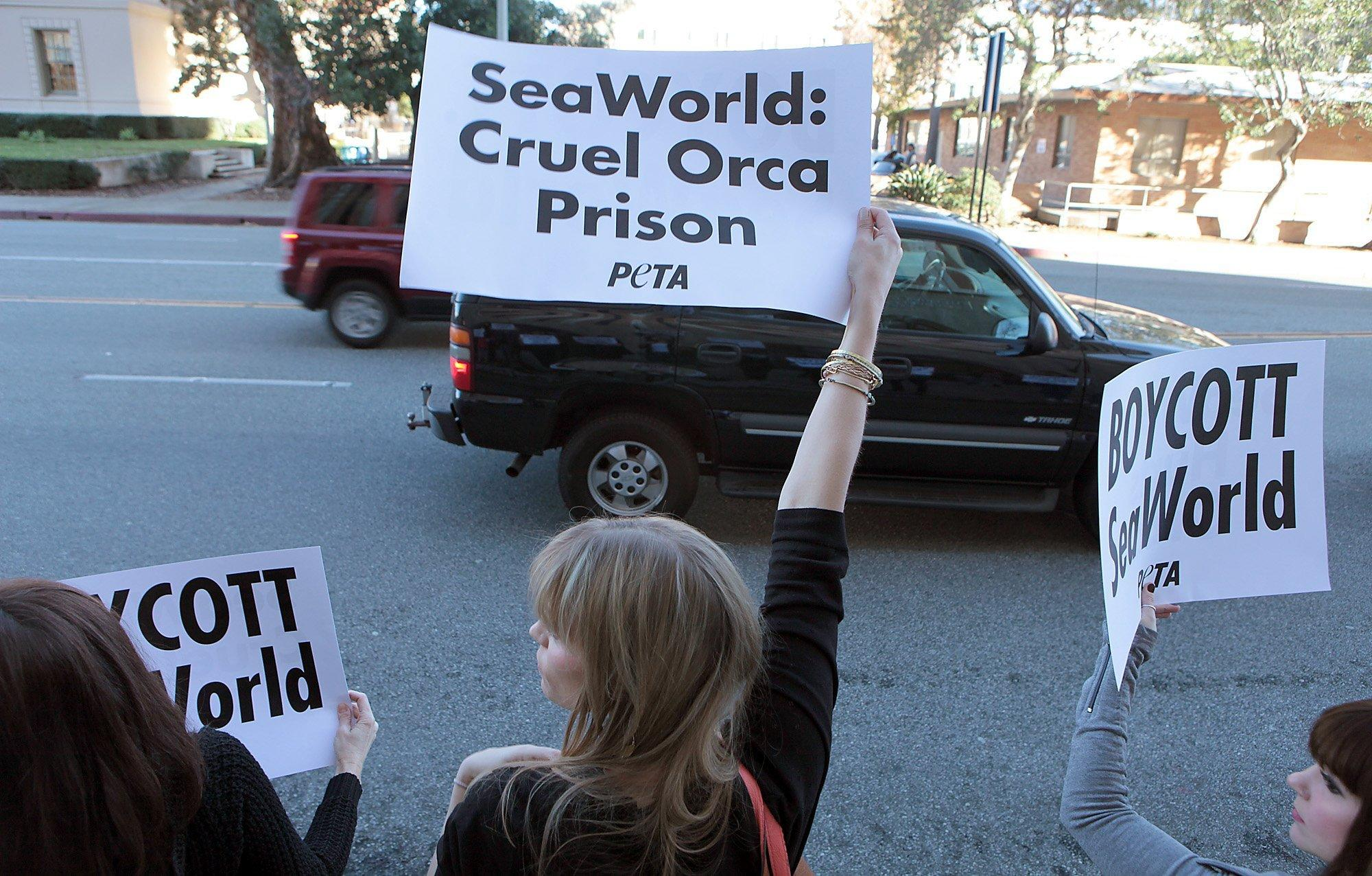 PASADENA, CA - FEBRUARY 3, 2014: PETA members and their supporters hold signs outside the Pasadena Courthouse in support of 16 people arrested for protesting against SeaWorld's float in the Rose Parade February 3 2014 in Pasadena. (Brian van der Brug / Los Angeles Times)