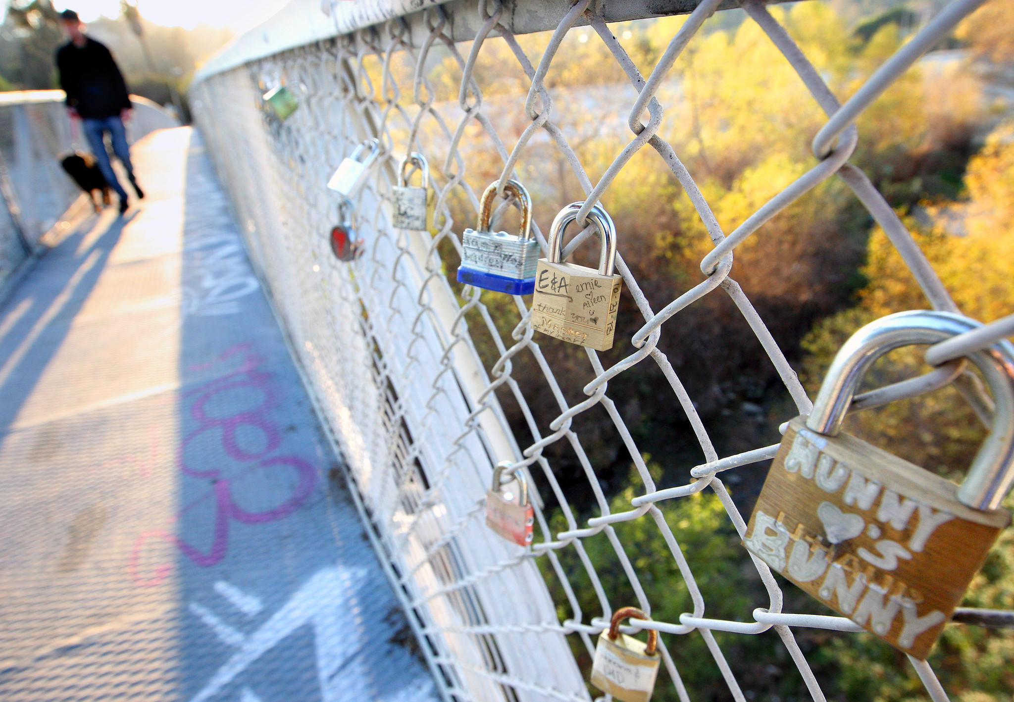 A pedestrian and his dog walk by love locks attached to the Sunnynook Pedestrian bridge in Atwater that follow a world wide romantic tradition.