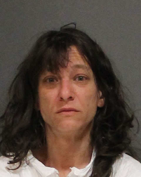Gail Litsky, 47, is charged with attempted murder, cruelty to persons, first-degree assault on a victim 60 or older, possession of less than 5 ounces of marijuana, possession of drug paraphernalia, first-degree strangulation and first-degree criminal trespass after police said she assaulted her mother late Friday.